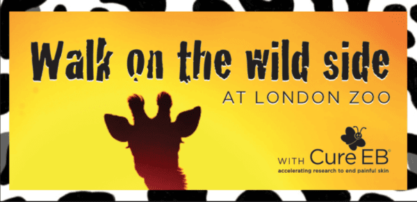 Giraffe in silhouette against sunset sky. Text reads Walk on the wild side at London Zoo with Cure EB